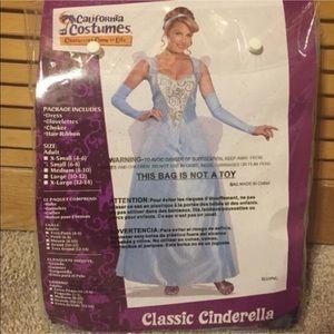 Cinderella Halloween Costume